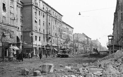 Melbournský krvavý kúpeľ alebo maďarská odplata za kruto potlačené povstanie