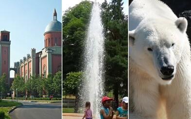 Mešita z Kežmarku aj ľadové medvede v Betliari. Východné Slovensko ukrýva zaujímavosti, ktorými ťa presvedčí o svojej unikátnosti