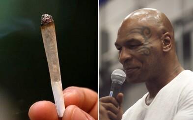Mike Tyson si otvorí marihuanovú farmu. Legendárny boxer bude konope pestovať neďaleko Los Angeles