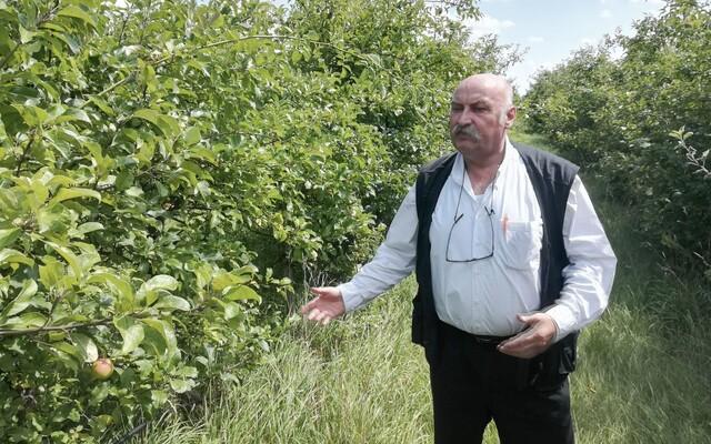 Mikuláš Vareha sa vracia: Vo väzení by mali byť štátne bordely. Rómom dám do lesa služobné slony, boxeri budú dojiť kravy