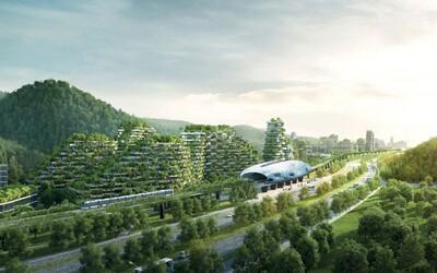 Milion rostlin, 40 tisíc stromů a 100 živočišných druhů. Čína začala budovat první lesní město, kterým zabojuje proti znečišťování