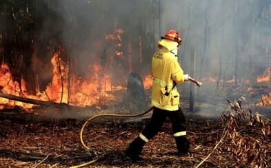 Milióny mŕtvych zvierat, tisícky zhorených domov, hustý dym a tma. Také sú požiare v Austrálii