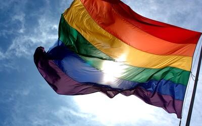Míra sebevražd lidí ve vztahu se stejným pohlavím klesla v Dánsku i ve Švédsku poté, co legalizovaly sňatky homosexuálů