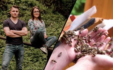 Mladí Slováci ti dokážu, že starať sa o včely nie je len pre dedkov. Vo vlogoch sa Adam a Táňa neboja žihadiel a hmyz chytajú holými rukami