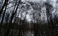 Mladíka Vladimíra, ktorý sa stratil v pohorí Tribeč, našli mŕtveho