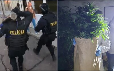 Mladíkovi zo Záhoria našli v dome desiatky dávok pervitínu a marihuany. Hrozí mu až 15 rokov za mrežami