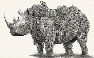 Mladý umelec kreslí ohrozené druhy zvierat, zisk venuje na ich ochranu