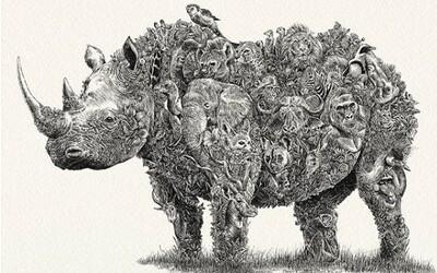 Mladý umělec kreslí ohrožené druhy zvířat, zisky věnuje na jejich ochranu
