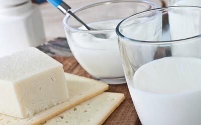 Mléko a mléčné výrobky jsou prý pro lidi škodlivé, zbytečné a jiní říkají, že anabolické a zdravé. Jaká je realita?