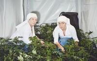 Mníšky pestujú marihuanu, aby ľudí vyliečili z bolesti chrbta, migrény a dokonca aj opice