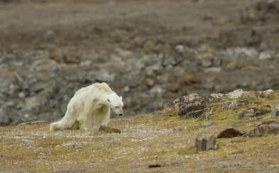 Množství oxidu uhličitého v atmosféře je nejvyšší za poslední 3 miliony let