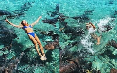 Modelka téměř přišla o ruku při pózování se žraloky na Bahamách. Ignorovala upozornění, neboť chtěla výjimečnou fotku