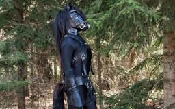 Moje výbava stála více než 200 tisíc korun. S ženou upřednostňujeme asexuální pony play, říká kůň Porthos Black Pearls (Rozhovor)