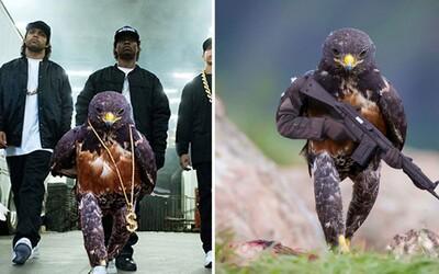 Momentka nejdrsnějšího ptáka světa dostala terapii Photoshopem. Fotomontáže z něj udělaly krvelačné monstrum