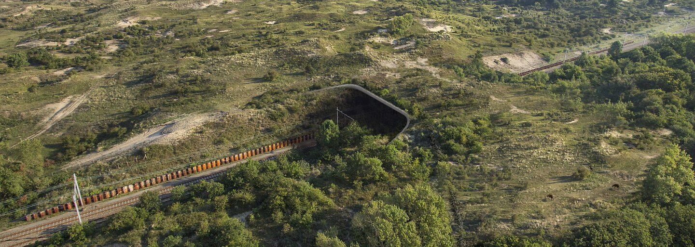 Mosty pro zvířata mohou vypadat i jako úchvatné a promyšlené stavby pomáhající přírodě