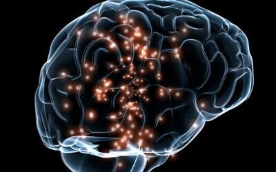 Mozog reaguje na negatívne správy intenzívnejšie ako na tie dobré. Ľudia sú naprogramovaní veriť viac zlu