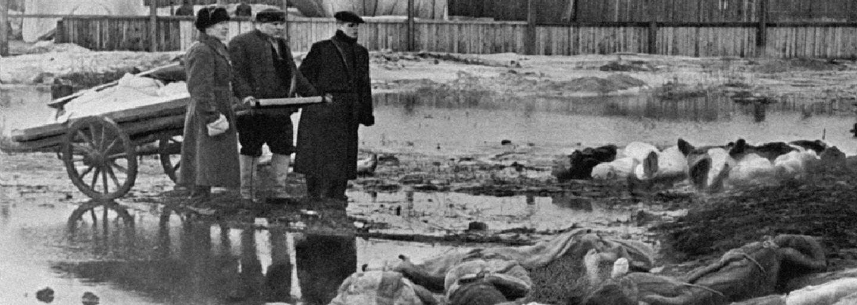 Mráz, pojídání koček a kanibalismus: Obyvatelé Leningradu bojovali o život uvnitř ledového pekla