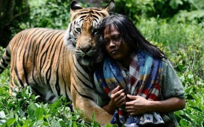 Muž a tiger najlepšími priateľmi