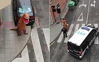 Muž během karantény běhal po ulici v kostýmu dinosaura. Musela ho dokonce řešit i policie