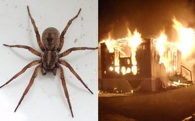 Muž chtěl hořákem zabít pavouka. Nechtěně si podpálil celý dům
