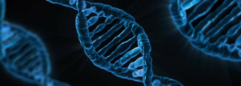 Muž se sám geneticky upravuje. Svou DNA mění tak, aby měl svalnatější předloktí nebo přirozená tetování