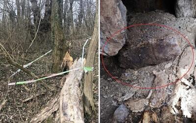 Muž hral geocaching, pri Seredi našiel nevybuchnutú muníciu z druhej svetovej vojny