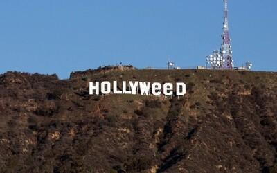 Muž, který udělal ze známého nápisu Hollyweed, promluvil o svém činu. Tvrdí, že legalizace marihuany není dostatečně probíraným tématem