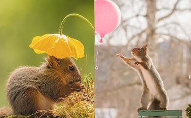 Muž se 6 let stará o rozkošné veverky. Výsledkem jsou úžasné fotky