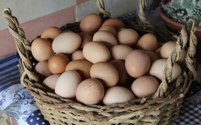 Muž se vsadil o 600 korun, že zvládne sníst padesát vajec. Když dojedl 41., zkolaboval a zemřel