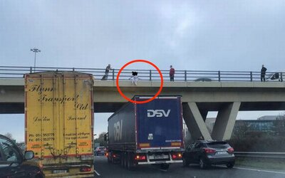 Muž zachránil dívku, která chtěla skočit z mostu. Zastavil pod ním se svým kamionem