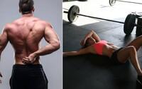 Mýty a zaujímavosti o svalovici: Je potrebná k tomu, aby sme budovali ďalšiu svalovú hmotu?