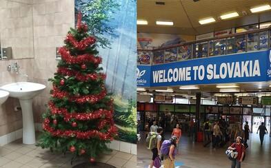 Na bratislavskej hlavnej stanici oslavujú Vianoce aj na toaletách. Umiestnili tam ozdobený stromček