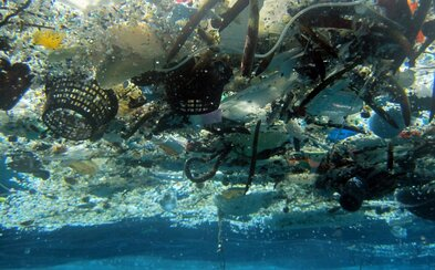 Na dně světových oceánů je asi 14 milionů tun plastu, tvrdí nová studie