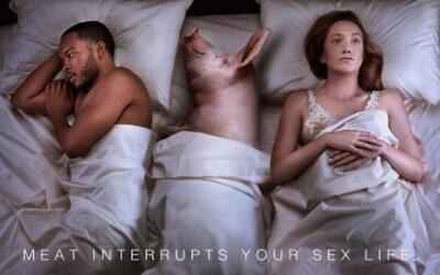 Na konzumáciu mäsa doplatíš pri sexuálnych hrátkach v posteli. Provokatívna kampaň od organizácie PETA opäť bojuje za práva zvierat