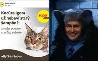 Na Matovičov šampón pre mačky zareagoval vtipnou reklamou aj slovenský zverimex. Toto sú najlepšie memečka