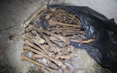 Na Písecku byly nalezeny další lidské kosti. Policisté našli tři pytle ostatků horních a dolních končetin