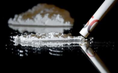 Na pražském letišti zadrželi cizince, který se do Česka pokusil propašovat 112 kapslí kokainu ve svém břiše