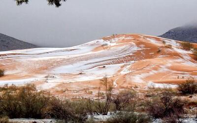 Na Sahare napadol poriadny sneh po prvýkrát za dlhých 37 rokov. Ľudia nechceli veriť vlastným očiam
