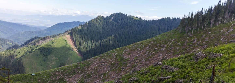 Na Slovensku mizne čoraz viac lesov a vzhľad krajiny sa stále mení. Akými zmenami sme prešli?