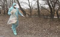 Na Slovensku potvrdili vtáčiu chrípku. Nakazila sa hydina, ktorú chovali na dvore