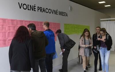 Na Slovensku pre koronavírus zmizla viac ako polovica pracovných ponúk. Kríza obchádza len IT-čkárov a lekárov