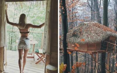 Na Slovensku vyrastajú domčeky na stromoch. Po Bratislave sa dá nájsť ďalší aj v Trenčianskych Tepliciach