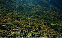 Na stadionu Dortmundu zemřel během zápasu fanoušek. Reakce obou fanouškovských základen vyvolává husí kůži