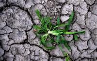 Na štyri ročné obdobia môžeš zabudnúť. Slovensko sa mení, budeme mať problémy so suchom aj s nedostatkom vody, hovorí klimatológ