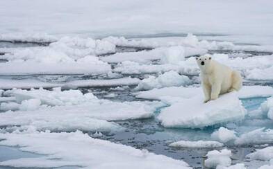 Na zastavenie topenia ľadovcov už môže byť neskoro, hrozia vedci. Rozlohy Arktídy aj Antakrtídy sú rekordne nízke