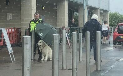 Nad moknúcim psíkom prišiel podržať dáždnik. Usmiateho ochrankára ocenili stovky tisíc ľudí
