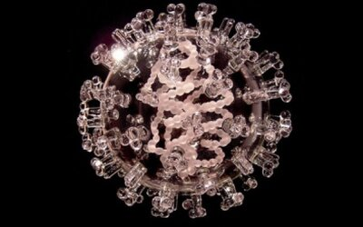 Nádherné sklenené sochy smrtiacich vírusov