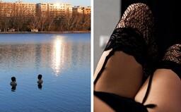 Nadrogovaný muž sa pohyboval v samodržkách s obnaženým údom a palicou v ruke v okolí bratislavského jazera: Hrozia mu 3 roky
