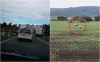 Naháňačka ako z filmu: bratislavskí policajti museli strieľať, vodič mal dodávku plnú migrantov. Chytili ho až v poli