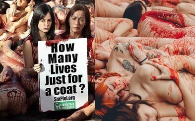 Nahí aktivisti v Barcelone obraňovali práva zvierat. Bojovali proti odevom z kože a kožušín